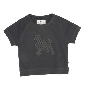 http://www.rockonbabies.com/509-large/tshirt-doux-poodle-by-shampoodle.jpg